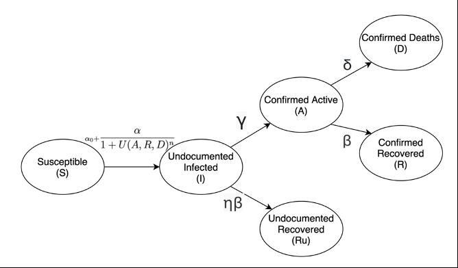 Figure 1 Covid 19 Transmission Model