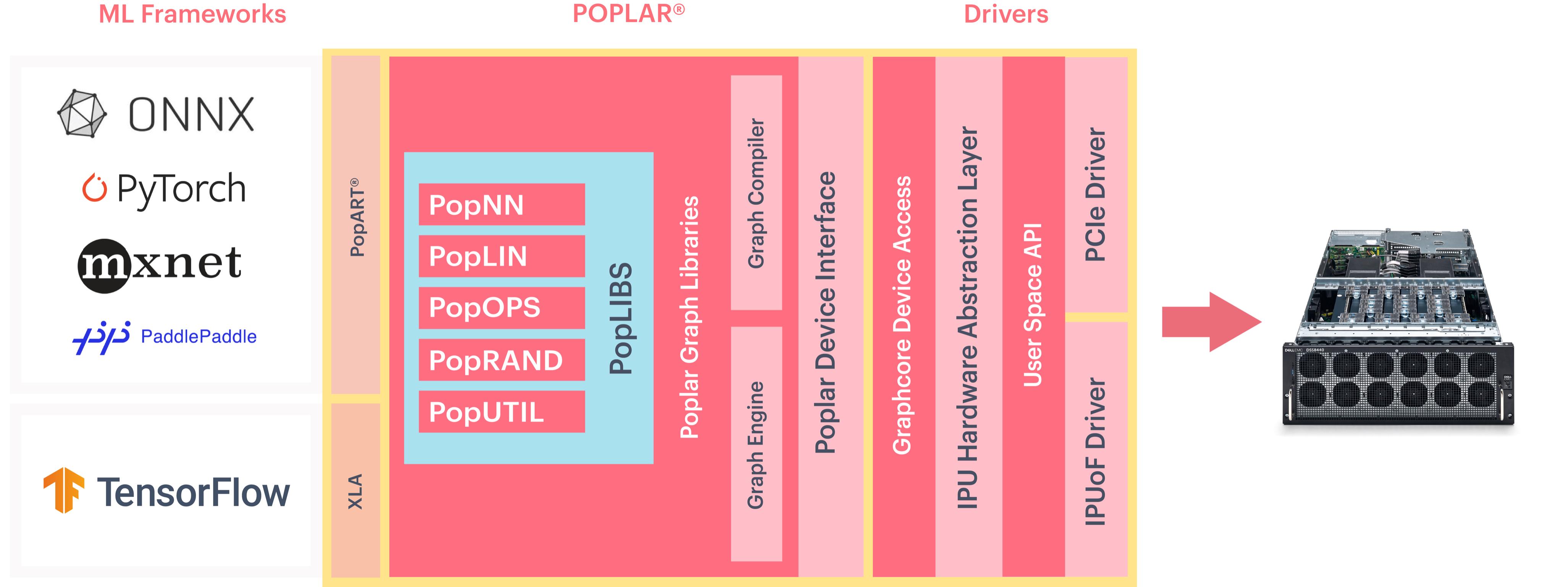poplar-new